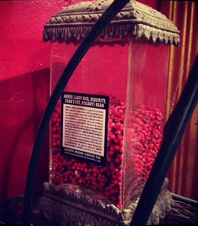 Abrus-Bean-Jar-at-the-Lucky-Mojo-Curio-Company