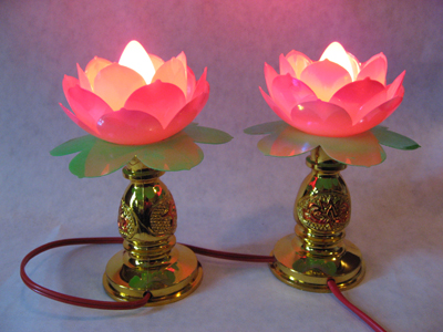Chinese-Lotus-Lights-at-the-Lucky-Mojo-Curio-Company