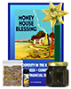 Lucky Mojo Curio Co.: Money House Blessing Honey Jar