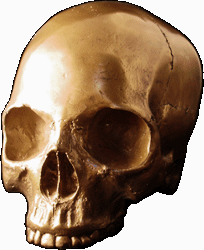 bronze-resin-cranium-From-Lucky-Mojo-Curio-Company