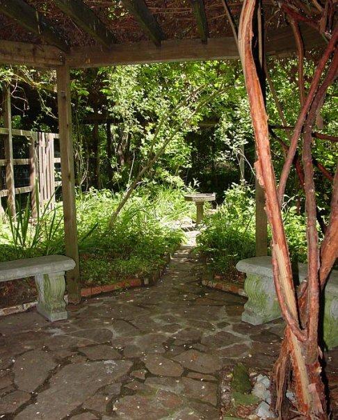 lucky mojo courtyard