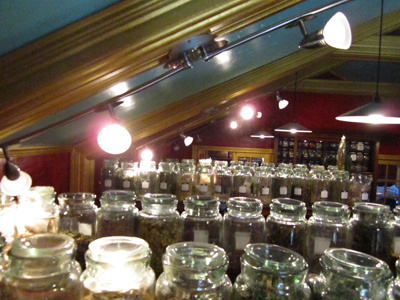 More Track Lighting-at-the-Lucky-Mojo-Curio-Company
